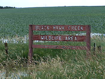 Black-Hawk-Creek-Wildlife-Area350